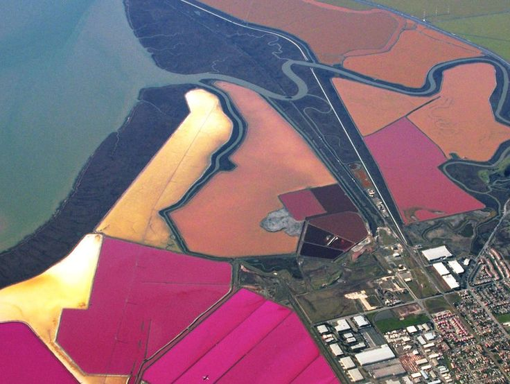 Salt Ponds of San Francisco Bay  Newark, California  Of all the tidal wetlands around the globe, few can compare to the kaleidoscope of color that brightens the grey landscape of the San Francisco Bay. These configurations of color against the drab shades of the bay are the San Francisco Bay salt ponds. The bright pond pockets of red and green are caused by the organisms or micro-algae living within them. The colors are reactions to salt levels, creating a stunning canvas of vibrant hues.