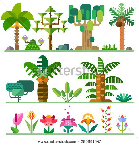 Tropical plants. Different types of trees, flowers, bushes. Vector flat  illustrations