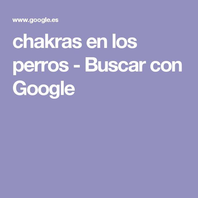 chakras en los perros - Buscar con Google
