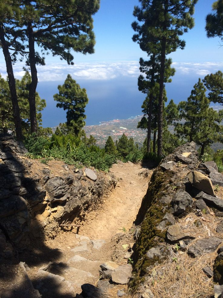 Beautiful trails in La Palma, Canary Islands, Spain. timothyallenolson.com