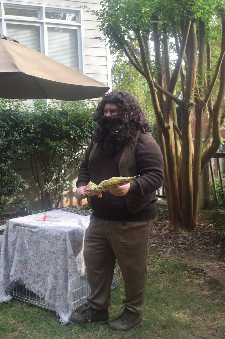 Hagrid taught Care of Magical Creatures Hagrid, Harry