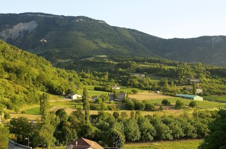 Le panorama sur les noyers, le vignoble de Clairette et les montagnes