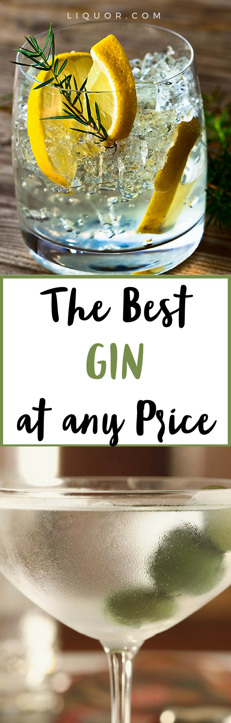 We had our expert bartenders pick their favorite #gin at any price. You're going to want to know these.
