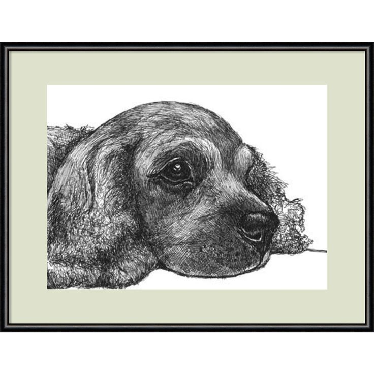Framed Art Print 'Charlie the Cocker Spaniel Dog' by Beth Thomas 13 x 11-inch