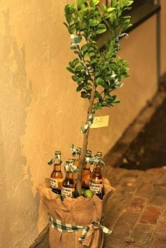 Best Housewarming gift EVER!!! I sure wish one of my friends would just buy a house/condo already, so I can buy this for them. Baby Lime Tree with corona bottles and salt. LOVE LOVE LOVE THIS IDEA!!! :)