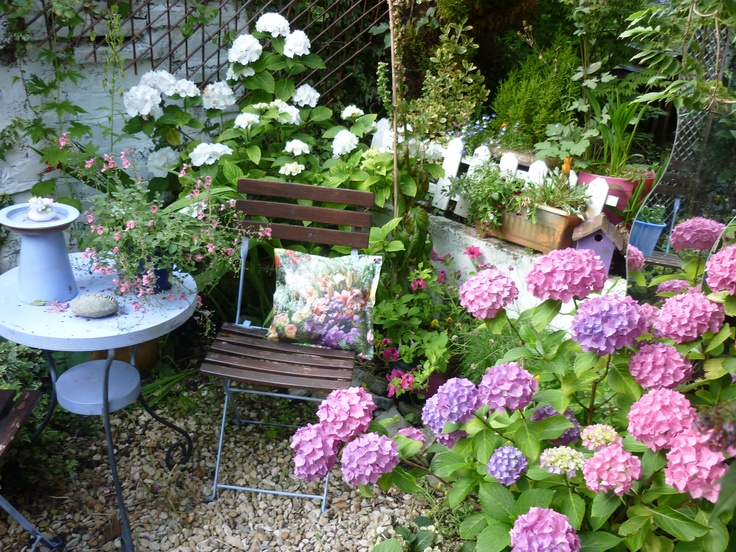 my own garden!!!! on the seat of the little chair one of my 'all weather cushions' made out of oil cloth so they can be left out in all weather....