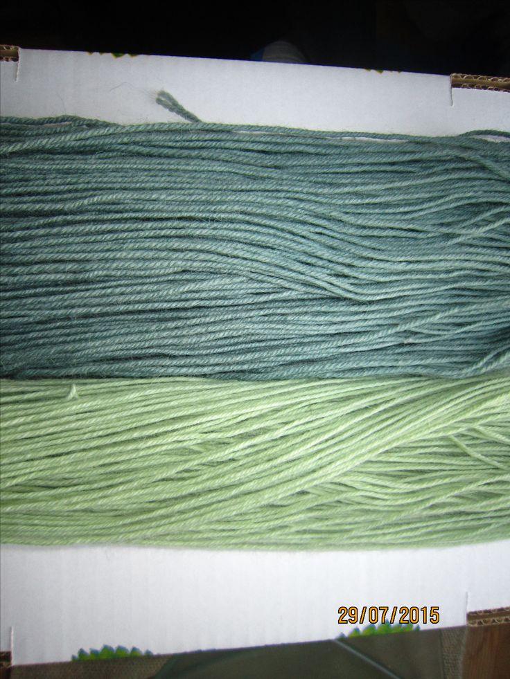 Sinisillä Lupiininkukilla ja pitkällä liotuksella. Dyeing with blue lupine.