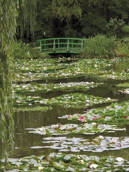 Nov 2019 - Photographic Print: Japanese Bridge and Lily Pond in the Garden of the Impressionist Painter Claude Monet, Eure, France by David Hughes : Spring Aesthetic, Nature Aesthetic, Aesthetic Green, Aesthetic Japan, Claude Monet, Images Esthétiques, Lily Pond, Pretty Pictures, Green Pictures