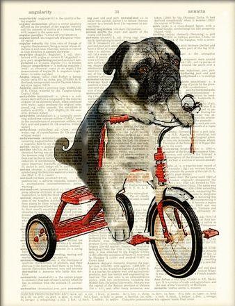 Pug Art Print Mike the Trike pug dog on a tricycle original art vintage dictionary page book art print.