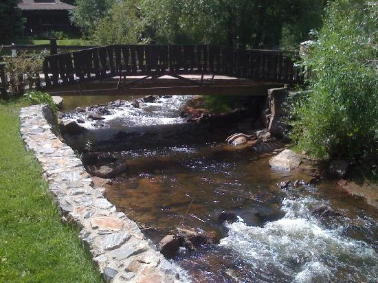 Evergreen, CO: CreekPools Area, Neighborhood Finding, Larger Pools, Beautiful Colorado, Tourism, Front Range, Eating Cake, Colorado Hom, Evergreen Things