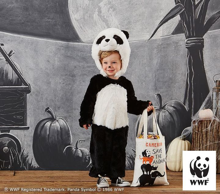Pin for Later: 169 Warm Halloween Costume Ideas That Won't Leave Your Kids Freezing Endangered Panda Costume Pottery Barn Kids Endangered Panda Costume ($79)