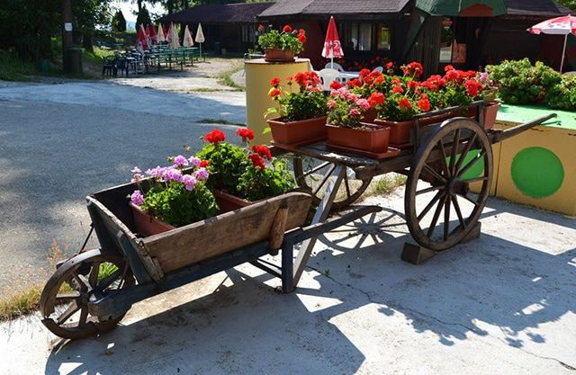 34 Way To Use That Old Wheelbarrow As A Planter Ideas And Pictures Wheelbarrow Planter Wheelbarrow Planters