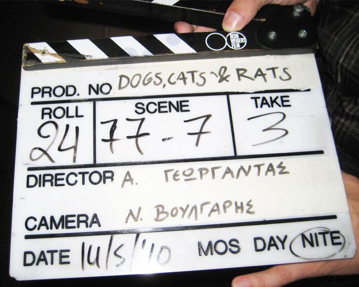 http://www.mysightofbeauty.com/my-first-film-experience/ #movie #cinema