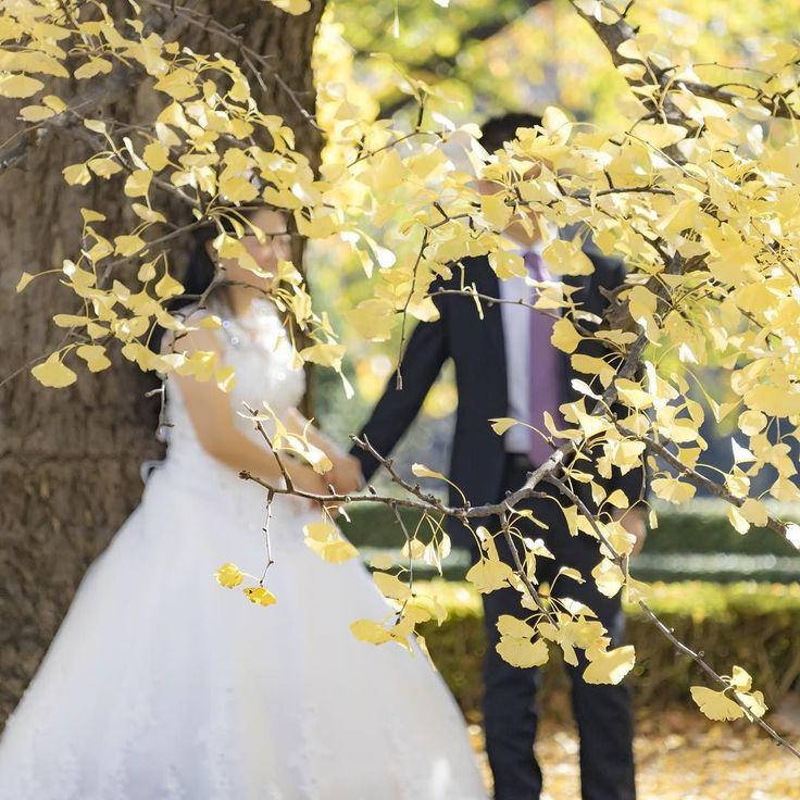 あらおめでとうございます  #結婚#marriage #ウェディングドレス#wedding #公園#park #綺麗#beautiful #幸せ#happy #風景#自然#景色#picture#landscape#nature #落ち葉#葉っぱ#紅葉 #東京#日本#tokyo#japan#love#loves_nippon #写真好きの人と繋がりたい