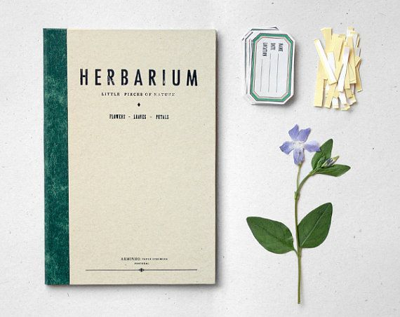 """Résultat de recherche d'images pour """"notebook herbs design"""""""