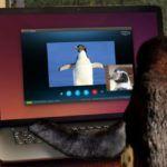 Es de Skype para Linux, Finalmente, lo Suficientemente Bueno para Windows Switchers?