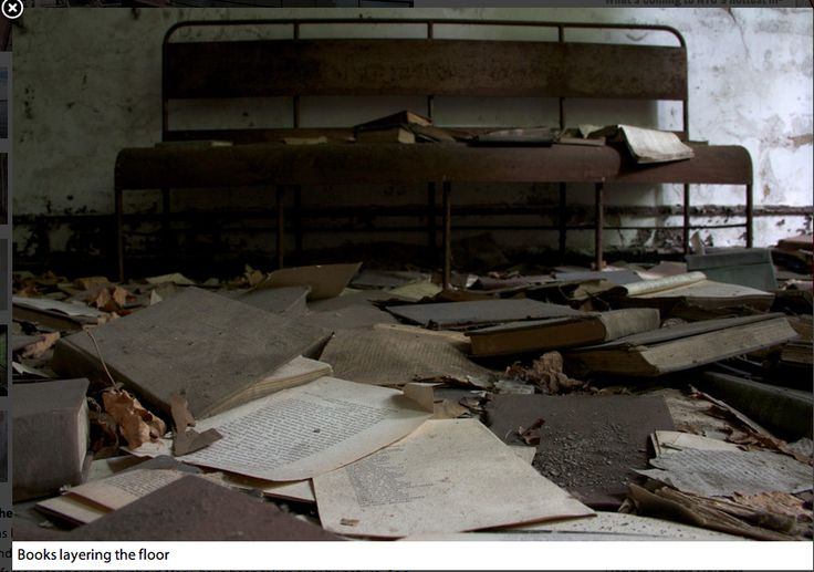 Photo by Max Touhey: http://ny.curbed.com/archives/2012/09/04/a_30photo_tour_of_the_abandoned_north_brother_island.php