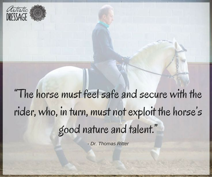 """The horse must feel safe and secure with the rider, who, in turn, must not exploit the horse's good nature and talent."" - Thomas Ritter artisticdressage.com"