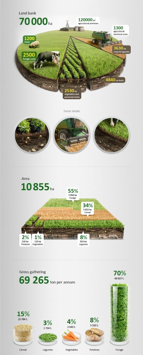 This agricultural infographics is very creative and abstract, taking a pie chart and making it lifelike and 3D.