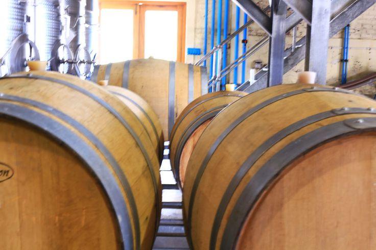 Beautiful oak barrels  http://www.grandeprovence.co.za/the-estate/