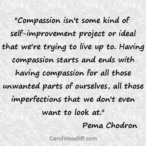 Pema Chodron Quotes Alluring 93 Best Pema Chodron Images On Pinterest  Pema Chodron Buddhism . Design Ideas