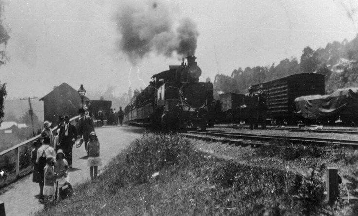 Vintage  narrow  gauge  railway.cockatoo early  1900,s