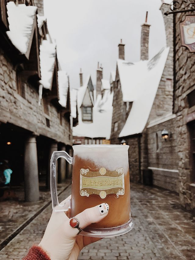Harry Potter And The Forbidden Journey 2010 Draco The Wizarding World Of Harry Potter Noelle S Favorite Things Harry Potter Wallpaper Harry Potter Pictures Harry Potter Aesthetic
