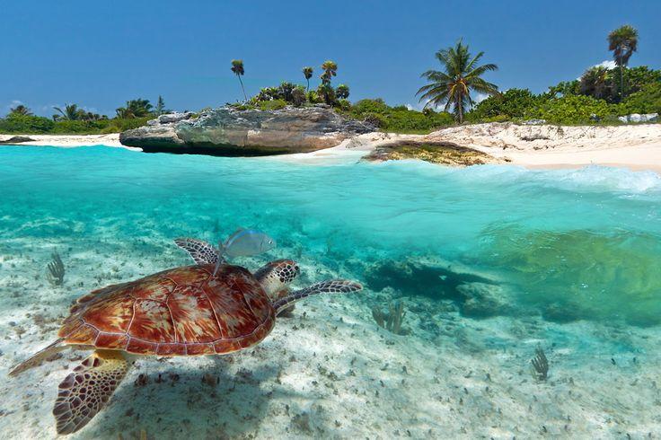 Au Mexique, le lagon Yalahua