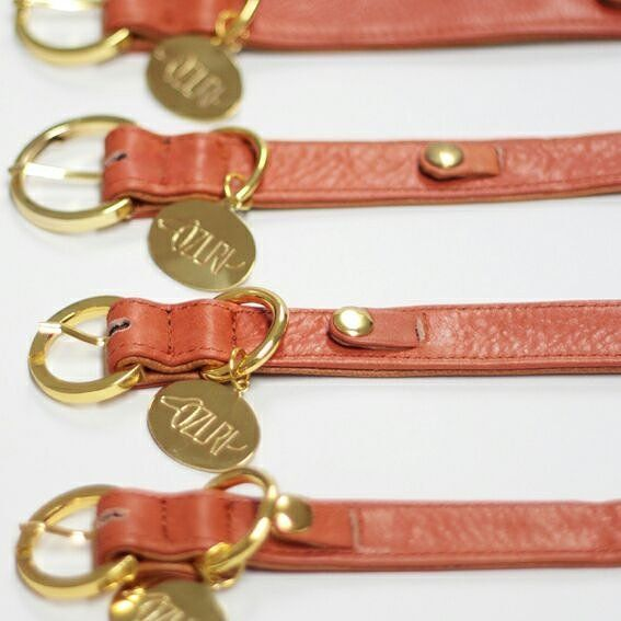 Available in four sizes the ZURI Collar fits for any furry baby.  The Collar is made of genuine leather to ensure the best quality for your furry babies.  #dog #dogsofinstagram #instadog #dogcollar #leather #dog #dogsofinstagram #instadog #dogcollar #leathercollar #luxury #dogluxury #dogleash #cat #catsofinstagram #catcollar #leather #jualan #onlineshop #anjing #anjingjakarta #anjingbali #design #poodle #pomeranian #anjingdijualcom_mydog #kucing #zuri #zuriofficial by zuriofficial