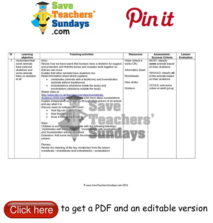 Animals with and without skeletons lesson plan. Go to http://www.saveteacherssundays.com/science/year-3/327/lesson-7-animals-and-their-skeletons/ to download this Animals with and without skeletons lesson plan. #SaveTeachersSundaysUK