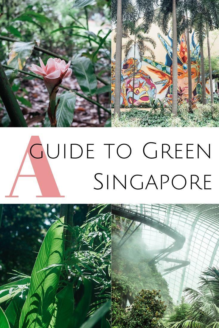 The Grass Is Always Greener In Singapore Singapore Travel Singapore Garden Asia Travel