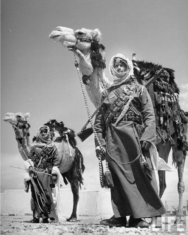 gunrunnerhell: Desert Warriors Arab soldiers standing guard with their camels. April 1948. (Photo: John Phillips)
