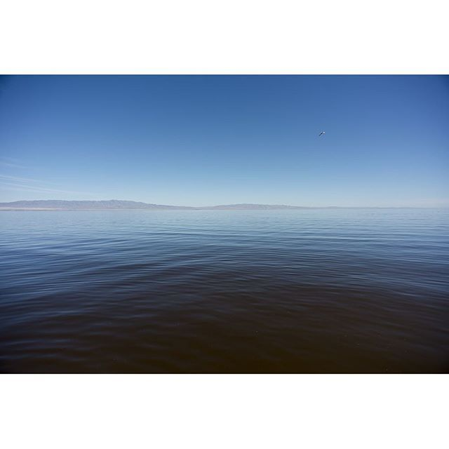 13 Best Images About Salton Sea State Recreation Area On
