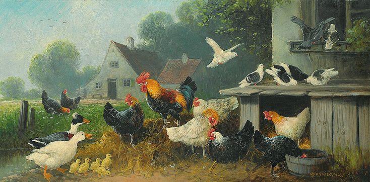 Курица - Википедия