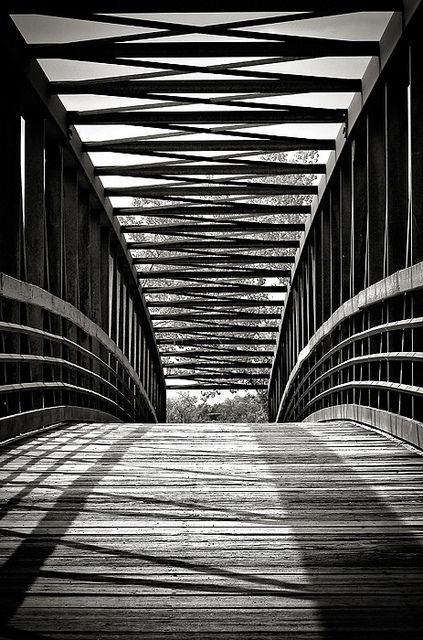 Berg Park in Farmington, bridge, path, curve, lines, architechture, wooden boards, shadows, breathtaking, symmetrical, photograph, photo b/w.