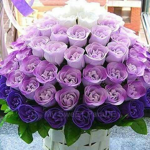 shades of purple flowers - Gecce.tackletarts.co