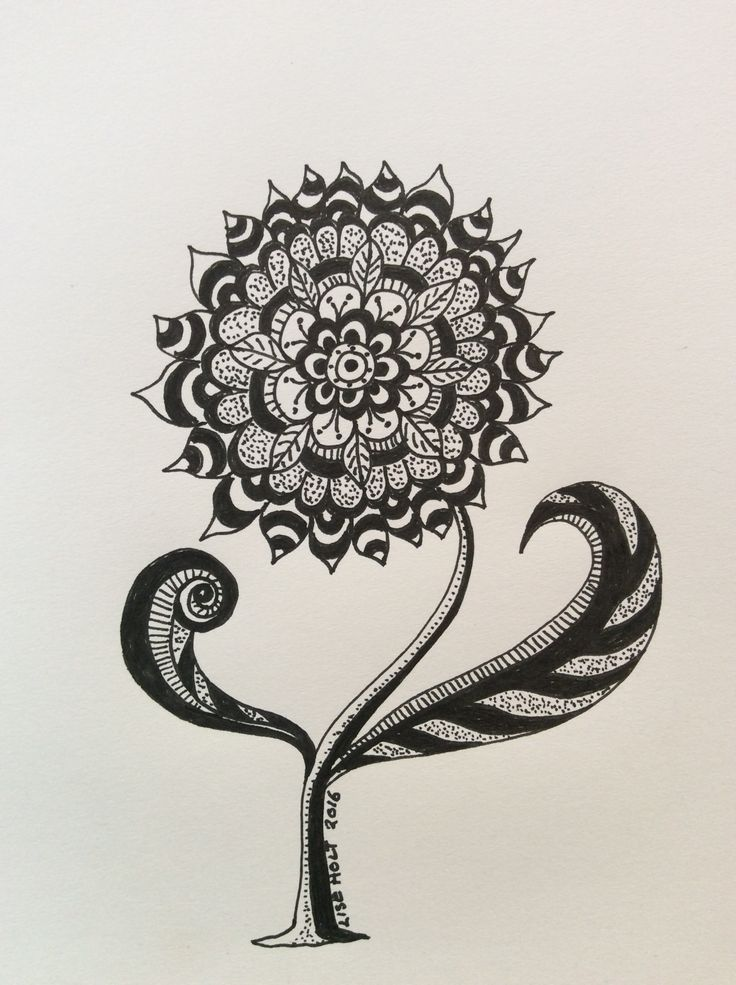 """""""Mandela Flower"""" sketch on paper by Lise Holt"""