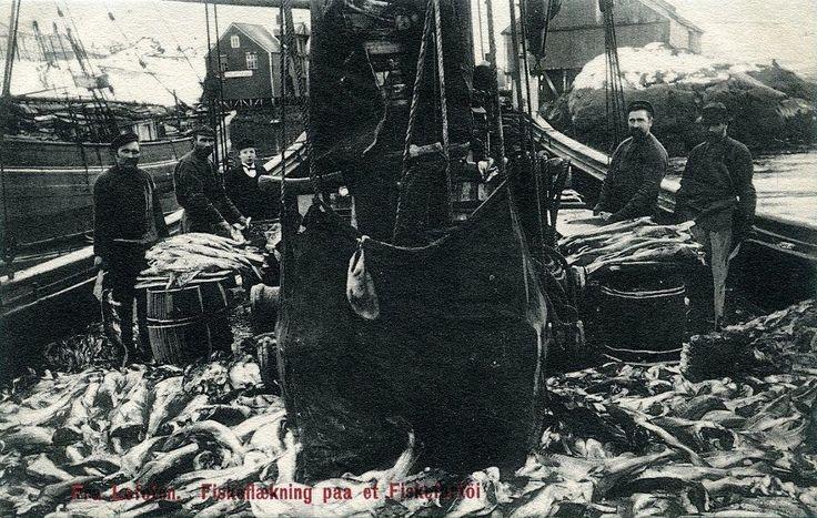 Nordlanf fylke Lofoten Fiskeflækning paa ët fiskerfartöi tidlig 1900-tallet