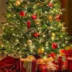 Green Christmas Tree Decorations UK -Personalised X-Mas Tree