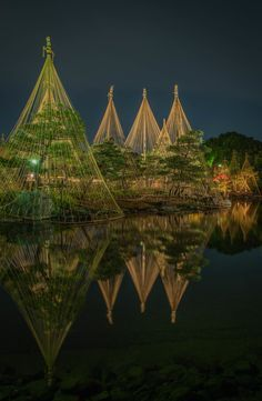 Japanese Garden in Nagoya, Japan 白鳥庭園、雪吊り、名古屋