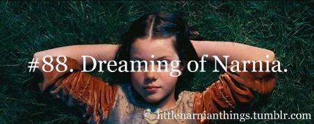 Little Narnian Things