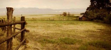 Il Ranch | Area Libro