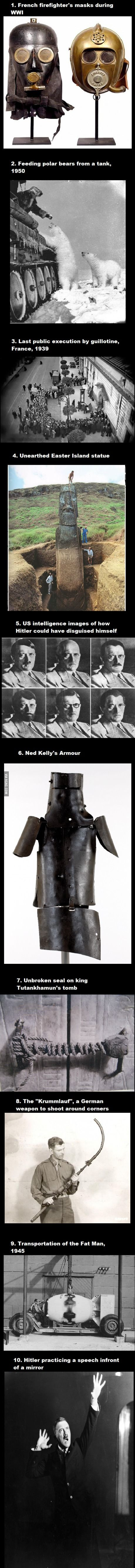 687 best history images on pinterest fun facts interesting