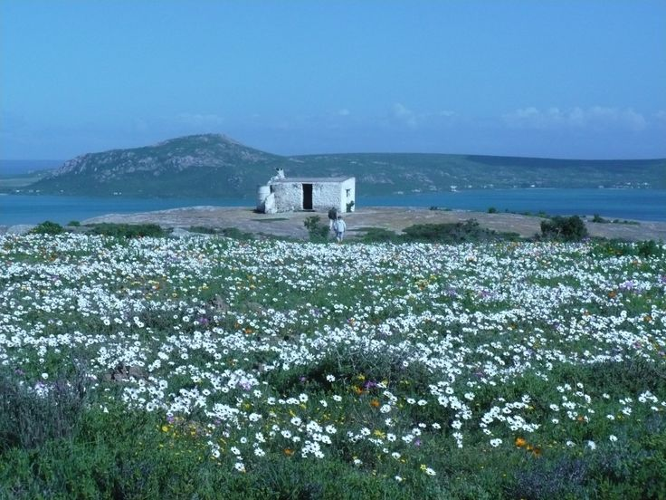 Langebaan, West Coast, South Africa