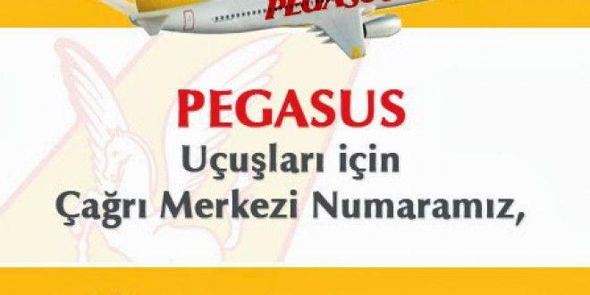 Pegasus Havayolları izmir adnan menderes ucuz uçak bileti sorgulama telefon numarası. #pegasusizmir #pegasusbilethatti www.indirimsepeti.gen.tr www.thybayii.com www.biletreyon.com