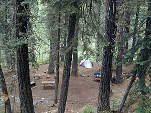 Total Escape can show you smaller campgrounds, deeper in nature, and most are free. DanaMite gives serious, first hand knowledge on primitive camp sites on backroads, from Baja to Shasta. You need good maps to find these remote camp spots, and maybe even a 4x4.