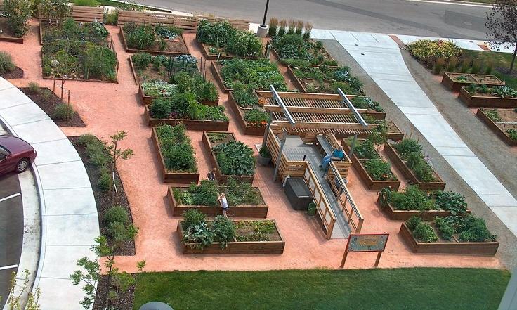 Charming Denver Urban Gardens   Creekside Community Garden | SS Community Garden  Inspirations | Pinterest | Gardens And Garden Inspiration