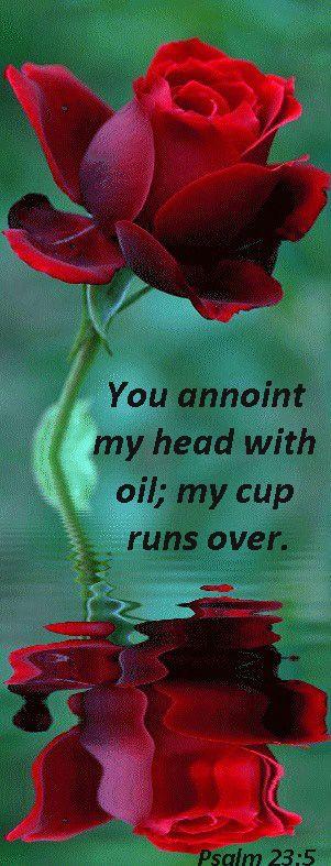 Psalm 23:5 - Amen❣❣