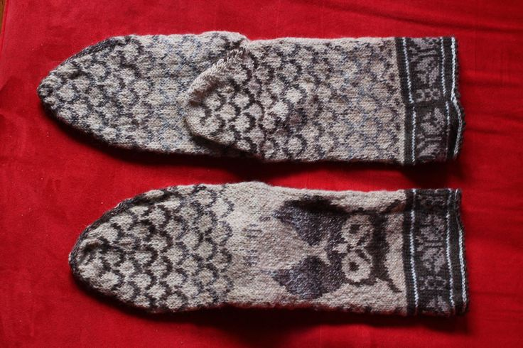 chaussettes chouette owl socks