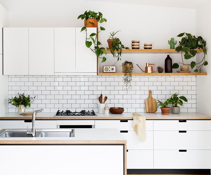Contemporary kitchen design Melbourne company doing affordable kitchens